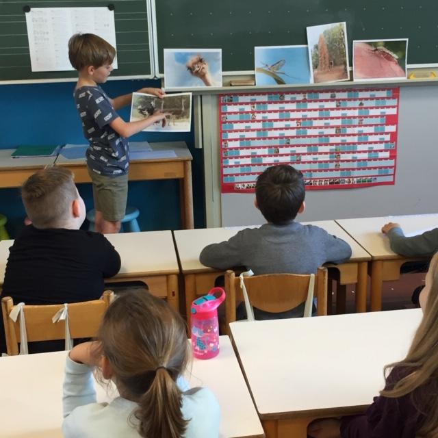 Dieren in de klas ( deel 3)